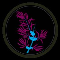 Sporkflips