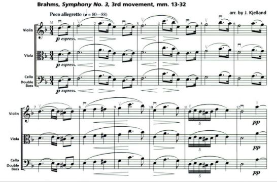 Brahms3.JPG