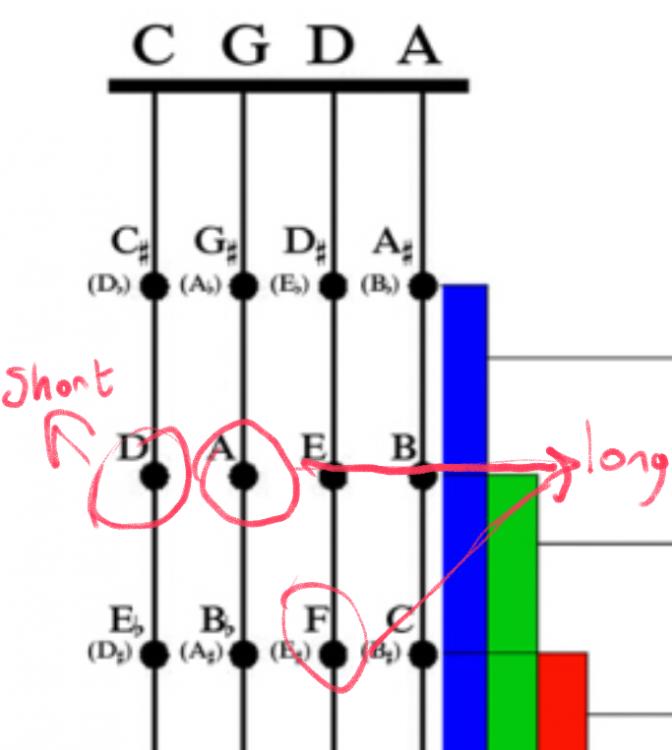 daf.thumb.png.cf760f57221df651803acc20b38f16b0.png